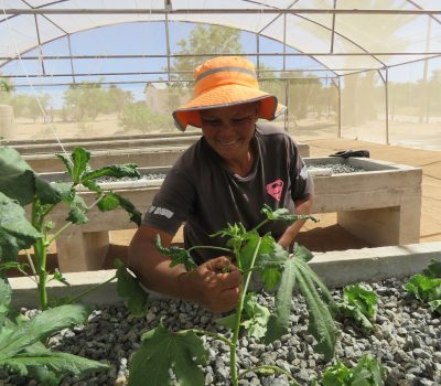 SYMBIOTIC FARMING PRACTICES SUCCEED IN THE KAROO